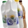 Nada Dairy