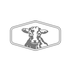Fat Cow Grill