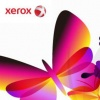 Xerox-Business International W.L.L