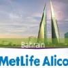 American Life Insurance (ALICO)