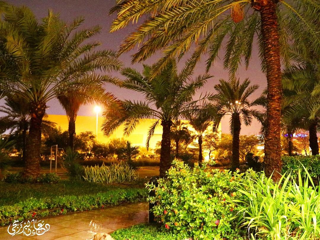 مطر غزير ⛈ @ Mövenpick Hotel - Bahrain