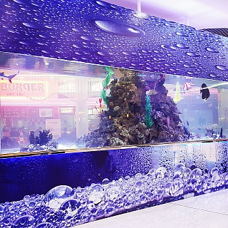 A very nice akuarium at saar mall 🐟🐠🐋