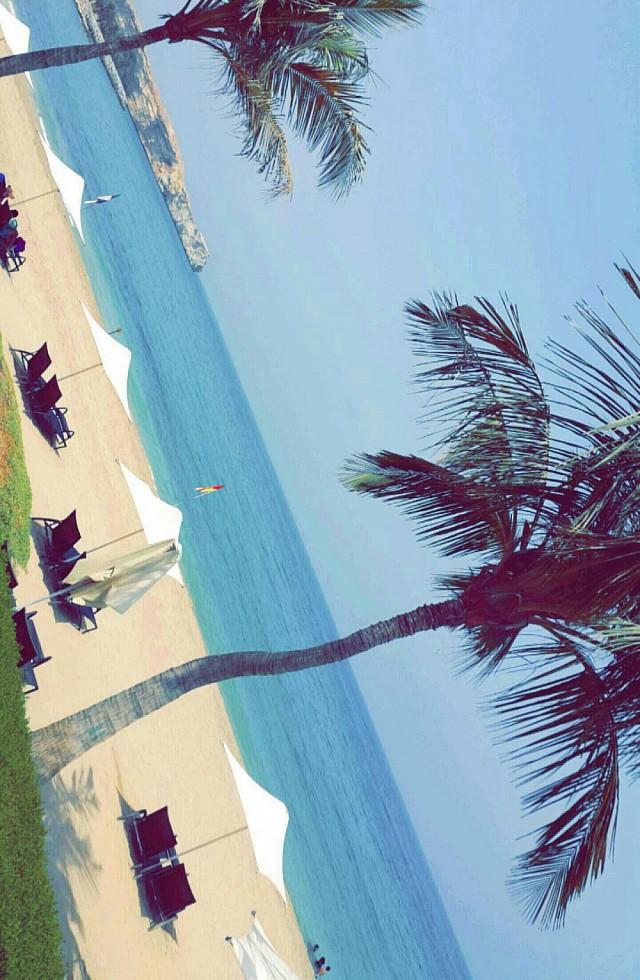 Al waha beach