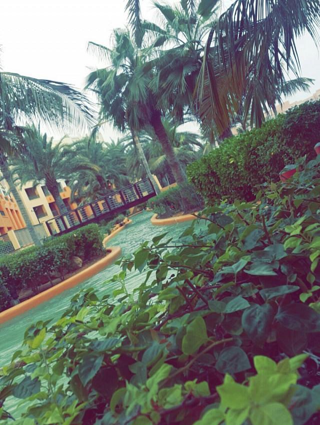 Al waha resort 😍