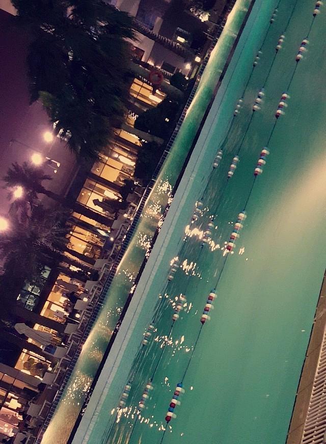 Palms beach hotel