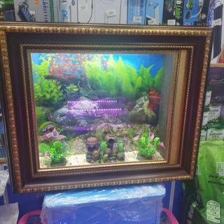 Wall tank Aquarium
